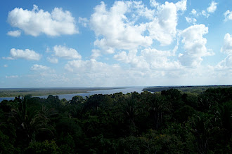 Photo: New River view from top of temple at Lamanai