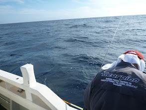 """Photo: 漁師みたいな釣り師の""""戸田さん""""もヒットですよー!"""