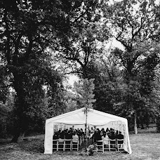 Wedding photographer Franck Petit (FranckPetit). Photo of 25.01.2018