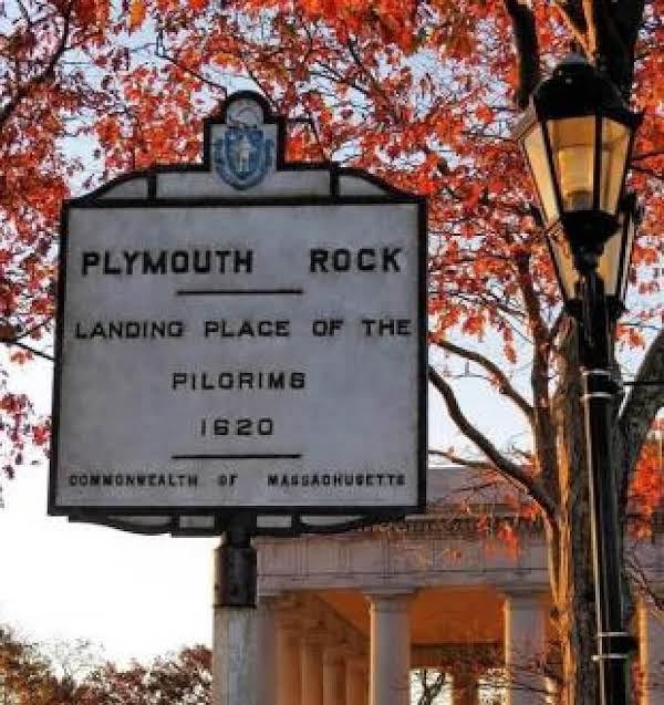 Plymouth Succotash