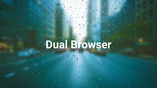 Dual Browser (Paid) Pro Screenshot