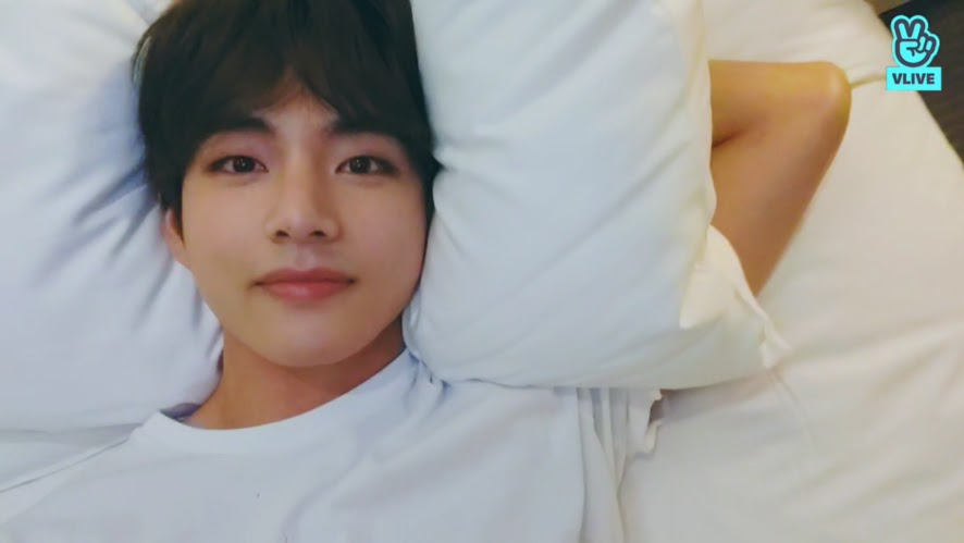bts v feature