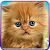 Talking baby cat. file APK for Gaming PC/PS3/PS4 Smart TV