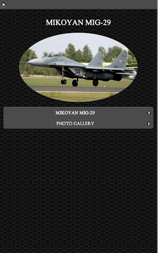 ✈MiG-29 Fighter Aircraft FREE