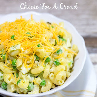 Classic Macaroni Salad With Cheese For A Crowd.