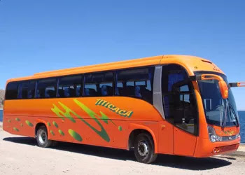 BUSES TITICACA