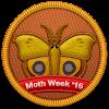 Moth Week 2016