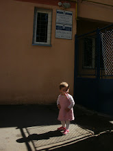 Photo: ahol tejport adtak