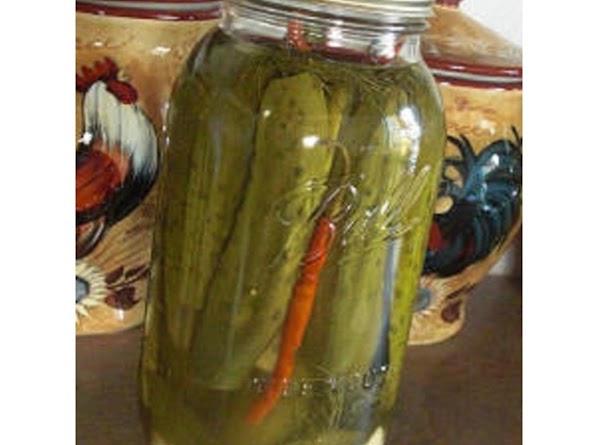 Glenda's Refrigerator Pickles Recipe