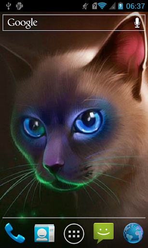 Egyptian cat Live WP