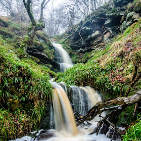 by John Haswell - Landscapes Waterscapes ( water, stream, northumberland,  )