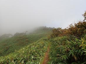 山頂は雲の中?