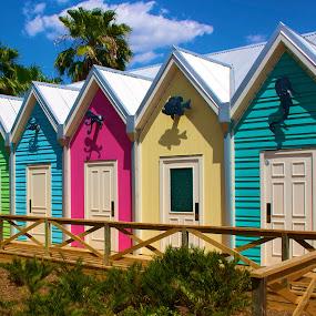 Colorful village by Jennifer Lamanca Kaufman - Buildings & Architecture Other Exteriors ( blue, florida, green, pink, yellow, villages )