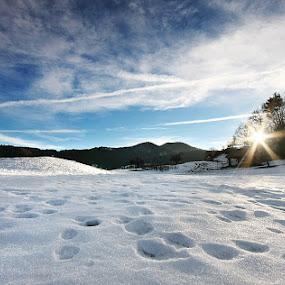 Nice sunny day. by Denis Klicic - Landscapes Prairies, Meadows & Fields ( winter, sky, blue, sunny, slovenia, snow, day, evening, sun )