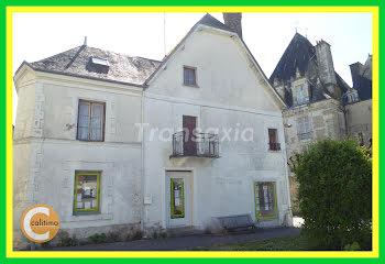 appartement à Azay-le-Ferron (36)