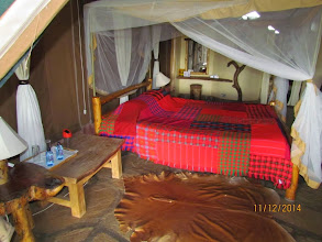 Photo: Inside our tent - cow hide rugs, large bed, water, torch, solar light for when generator not on, mosquito nets