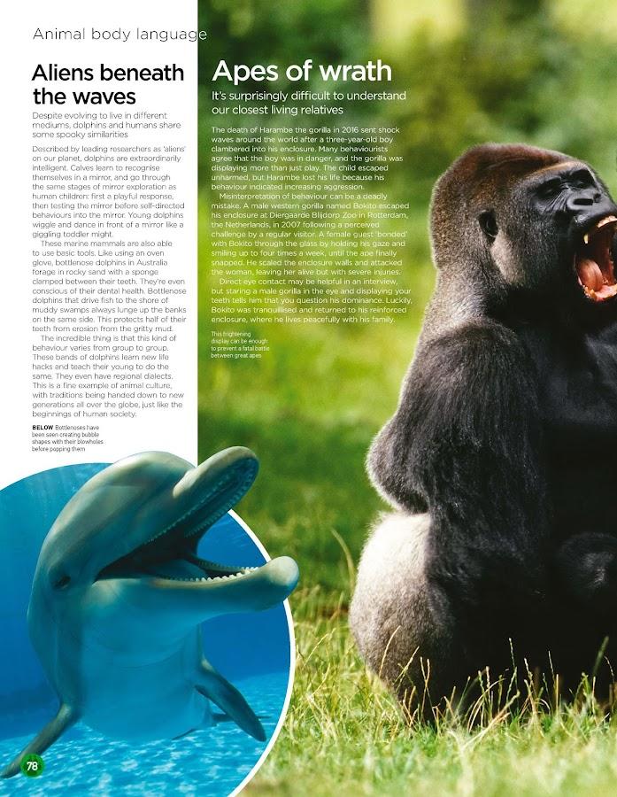World of Animals- screenshot