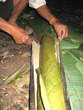 Photo: Rice steamed-3 Days Nam Ha Jungle Camp in Luang Namtha, Laos