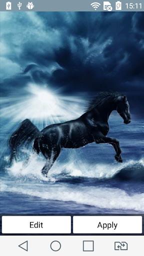 Black horse live wallpaper