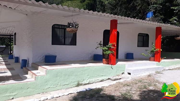 Fincas en Ibagué