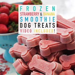 Frozen Strawberry and Banana Smoothie Dog Treats.