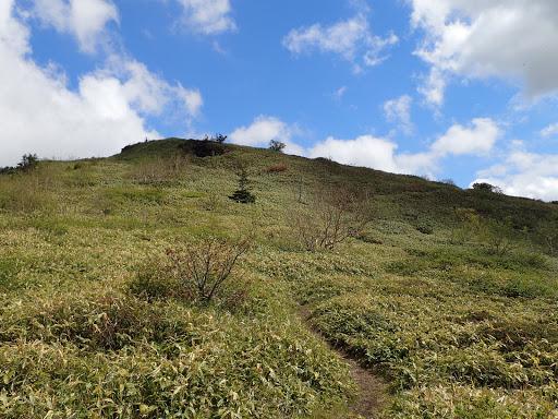 小根子岳への登り