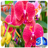 3D Orchid flower Wallpaper