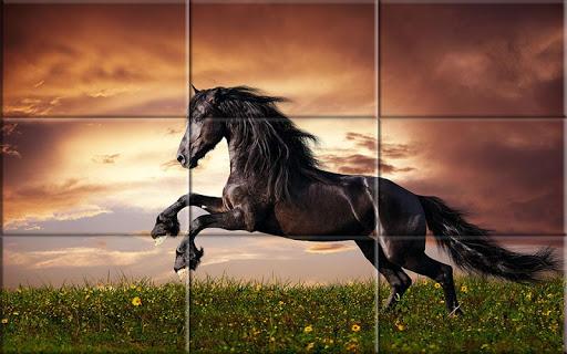 Puzzle - Beautiful Horses 1.24 screenshots 1