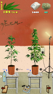 Weed Firm: RePlanted MOD APK 1.7.27 [Unlimited Cash] 7