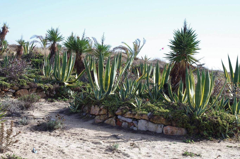 Blog de voyage-en-famille : Voyages en famille, Arrivée en terre andalouse