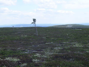 Photo: Hemfjället
