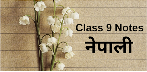 Class 9 Nepali Notes - Apps on Google Play
