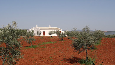 Photo: Hacienda among the olive groves by the lake