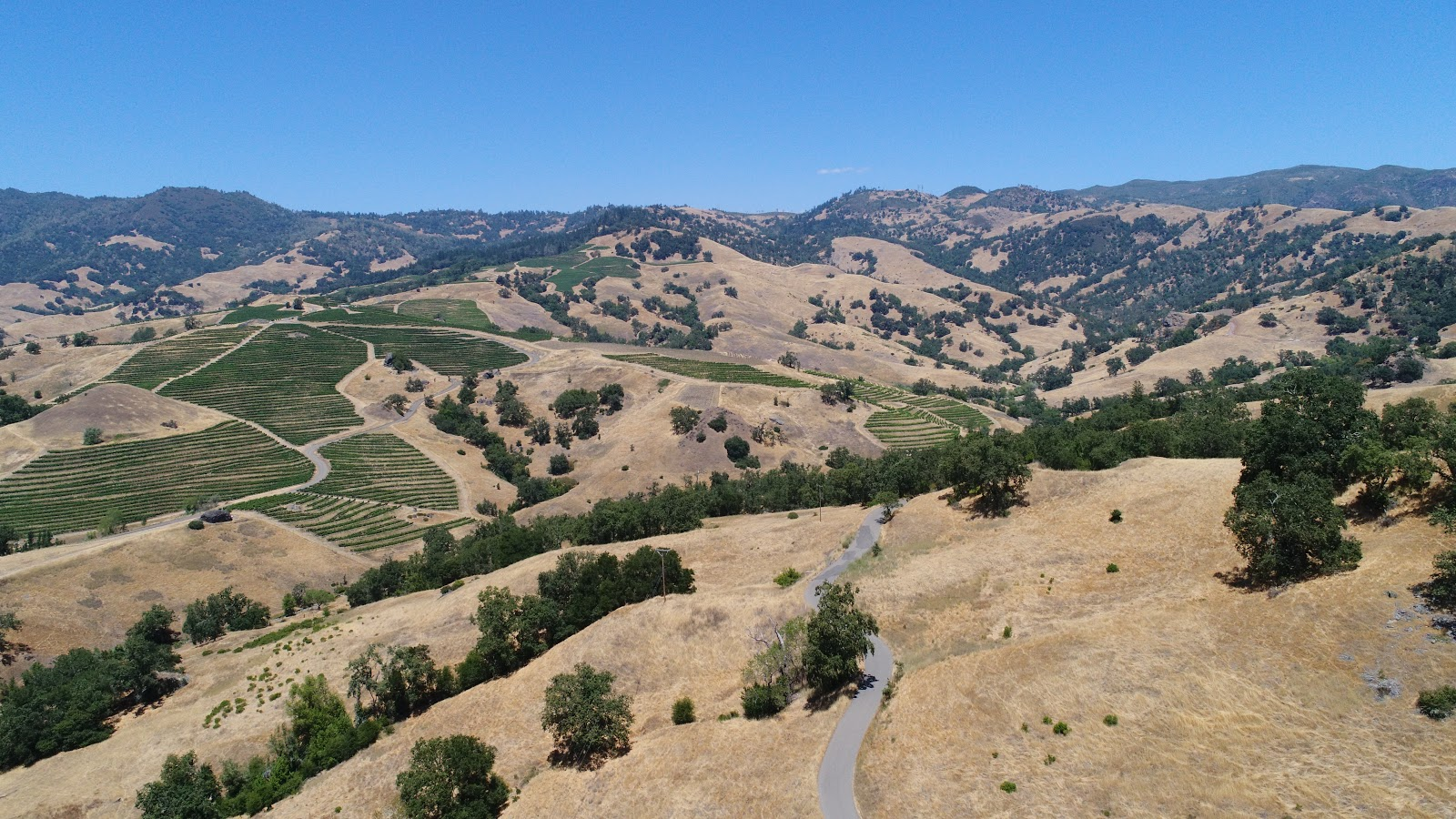 Climbing Pine Flat Road by bike - aerial drone photo of roadway, hillside, mountains and vineyards.