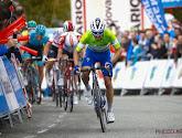 Tour du Pays Basque: Julian Alaphilippe contraint d'abandonner