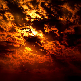 Red Sky by Justin Dart - Landscapes Weather ( sky, red, sunset, cloud, gold, nikon, sun )
