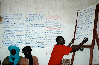Photo: Timbuktu, Mali, West Africa. 2008. Farmers discuss and share information about SRI and its practices. [Photo by Erika Styger]