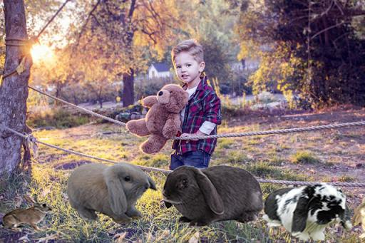 Bunny Rabbit Cute Photo Frame