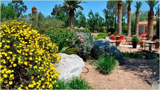 HD花園背景|玩個人化App免費|玩APPs