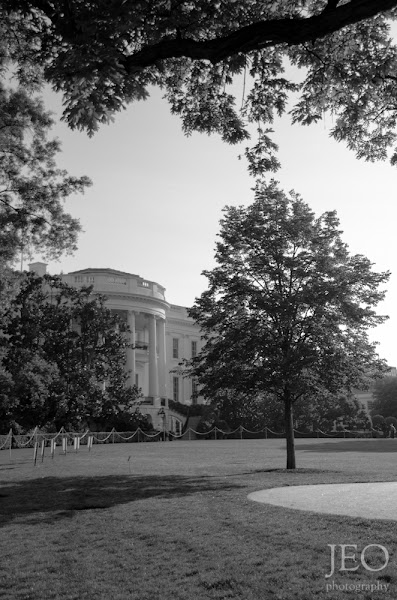 Photo: The South Lawn at the White House