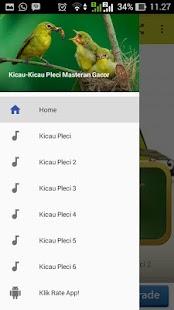 Kicau Pleci Juara - náhled