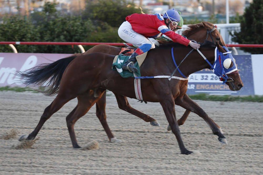 Doce Pasos (Rydilluc) se impuso en Handicap (1100m-Arena-VSC). - Staff ElTurf.com