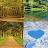 Nature Puzzles 2019 Icône