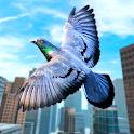 Wild Pigeon Bird City Simulator icon