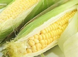 Fresh Corn Boiled On The Cob/ Jewel's Way. Recipe