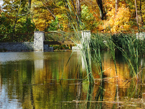 Photo: Bridge and reeds in the fall at Hills and Dales Park in Dayton, Ohio.
