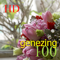 100 genezing HD icon