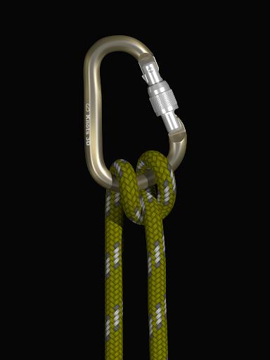 Download Knots 3D MOD APK 10