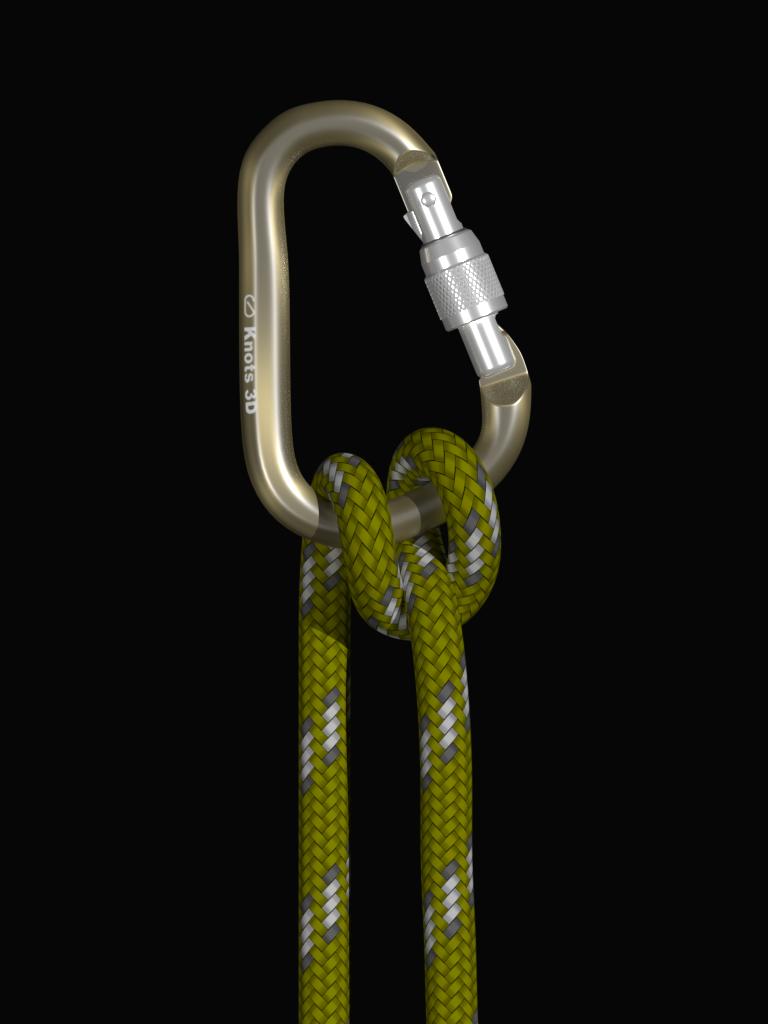 Knots 3D Screenshot 9