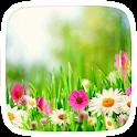 Spring Flowers Theme icon